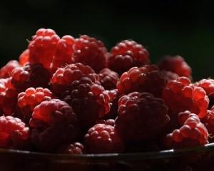 raspberries-1414155-m