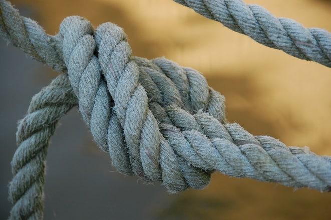 knots 1 1448751