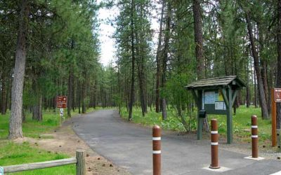 Check Out The Centennial Trail!